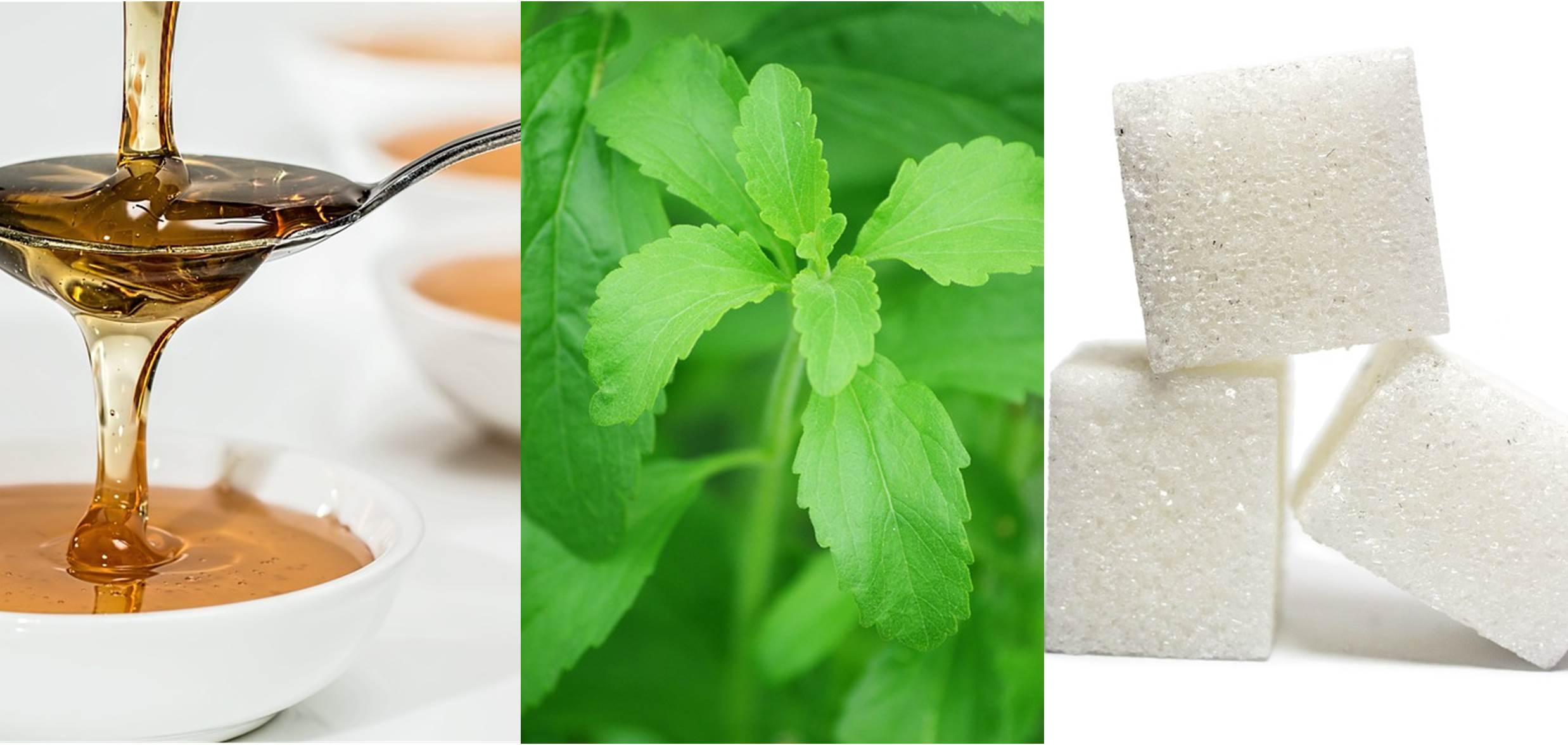 Tabla de conversión - Azúcar, Stevia y Miel - Mejor Real